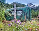 Old Truck and Flowers in Girdwood Alaska Gold Mine Framed Wall Art Lanscape Kenai