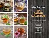 Tea Garden Seed Collection 6 Essential Tea Herb Seeds 20 Savings