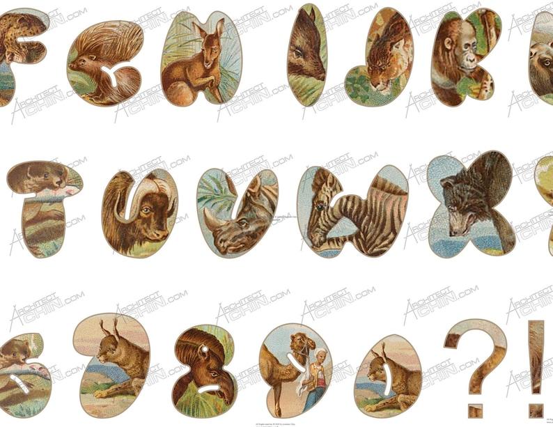 Animal Safari Animal Antique Letters Vinyl vintage letter Animal Vintage Vintage Vinyl Animal Vintage Letters Alphabet Vintage letter