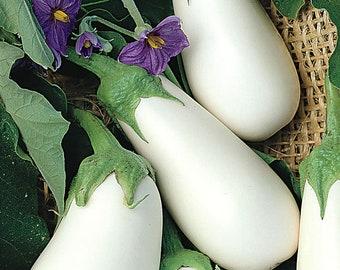 Organic White Eggplant - Blanka |  Open-Pollinated, non GMO | White Aubergine  | 20 seeds per pack