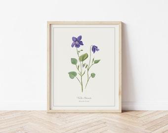English Violet Botanical Illustration | Digital Plant Artwork | Minimalistic Simple Art | Printable Floral Watercolour Print | Home Decor