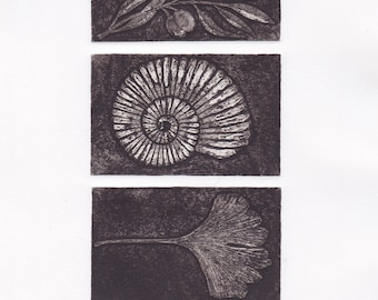 Collections III, an original collagraph print