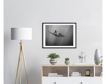 Great White Shark Wooden Framed Poster