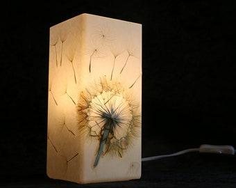 Lampe mit gepresster Riesen-Pusteblume, Lamp with Pressed Giant Dandelion
