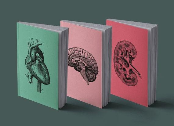 Notebook Human heart, kidney, brain | Anatomical Vintage Drawing | 13 x 20 cm