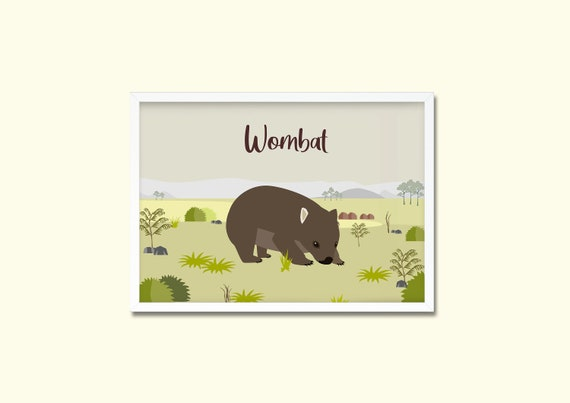 Wombat Illustration   DOWNLOAD Poster   A3