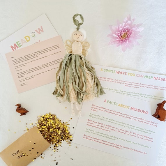 Fairy gift set with personalised letter, wildflower seeds and fact sheet | Children's home accessories | Nature themed gifts