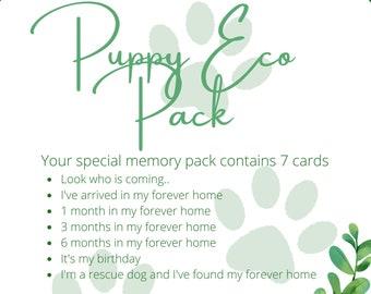 Puppy milestone cards, new dog mum gift, new puppy, puppy monthly milestone, eco gift, pet milestone cards, dog memories, dog photo