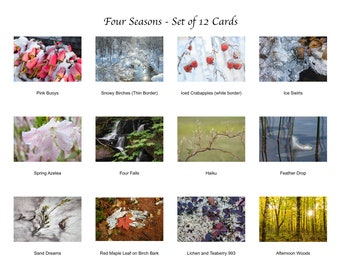 Four Seasons Gift Box Set of 12 Cards/Maine Landscapes and Closeups/Blank Photo Greeting Card/Soft Matte Excellent for Writing Notes