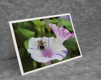 We Have Similar Stripes!/Perfect Mother's Day Card/Blank Photo Card/Soft Matte Nice for Writing Notes