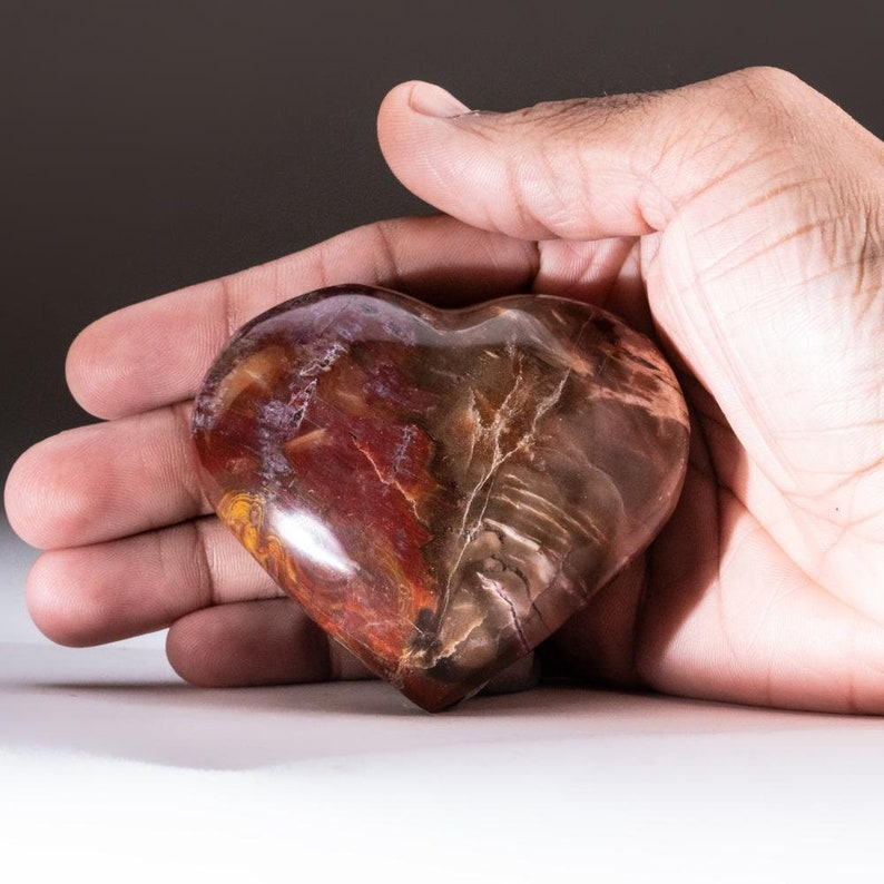 Petrified Wood Heart from Madagascar PWH12 198.5 grams