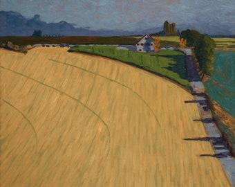Yellow Wheat farm land Washington