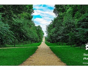 Lydiard in summer. Country Park symmetrical photo print