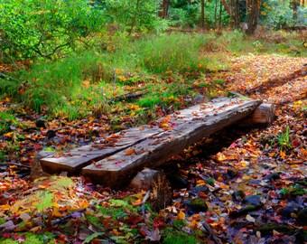 HDR  image Knauf Preserve Trail Cresco