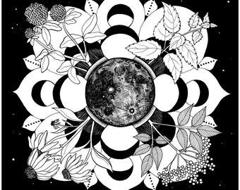 2021 lunar calendar // red clover, stinging nettle, elderberry & echinacea