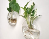 Wall Hanging Glass Terrariums Planter Oblate Flower Vase for Hydroponics Plants, Home Office Living Room Decor
