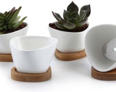 Small White Succulent Planter Pots with Bamboo Tray Triangle Set of 4, Geometric Ceramic Succulent Air Plant Flower PotS, White Modern Decor