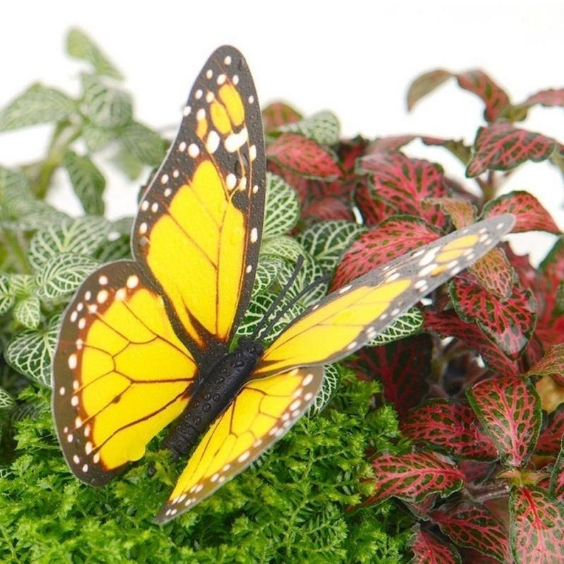 Butterfly Garden Stakes Bundle Pack Potted Plants image 1