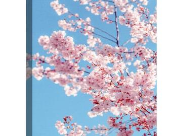 Sakura Wall Art Etsy