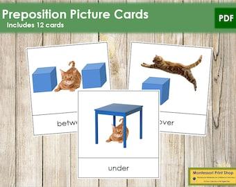 Preposition Picture Cards - Montessori Language & Grammar - Printable Montessori Cards - Digital Download