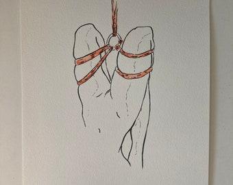 Shibari suspension - aquarelle