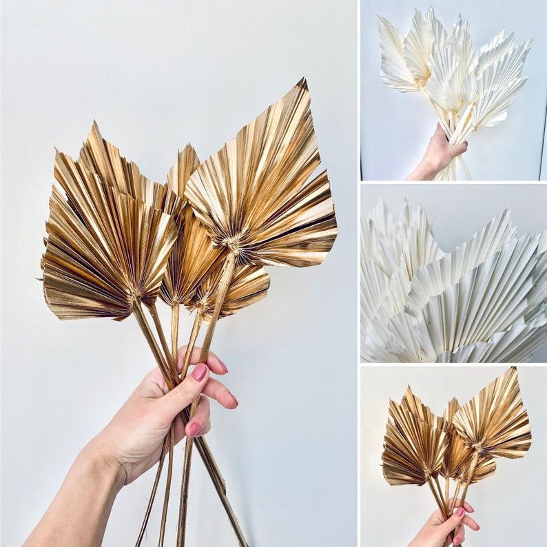 Natürliche getrocknete Palmblätter