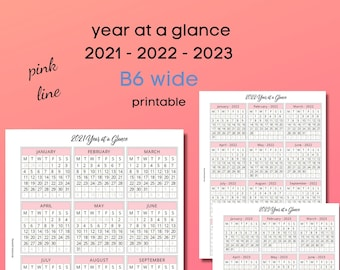 year at a glance - B6 wide - 2021-22-23 - pink line - for ringbound or discbound planners - printable
