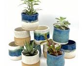 3 quot Succulent Ceramic Pot Small Planter Artisan Friend Gift Inspirational Whimsical Ceramic Clay Pot Sharing Sunshine
