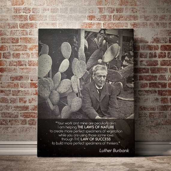 QUOTATION ART - ENTREPRENEUR Art – Motivation Luther Burbank Quotes Art - Black White Art - Canvas Print Framed Wall Art - Burbank Plants