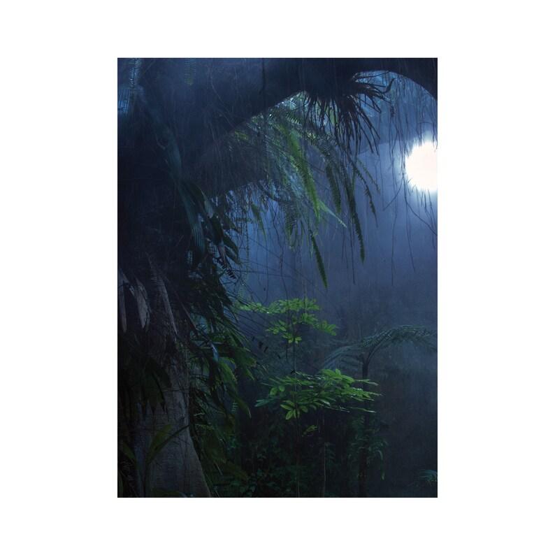Postcard Tropiques  A6 print