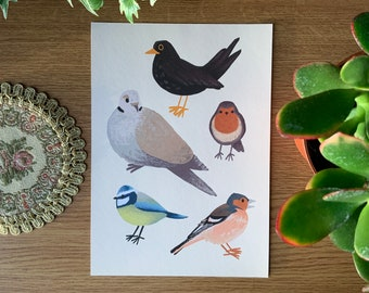 Irish Garden Birds Fine Art Print