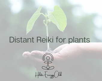 Distant reiki 15 minutes for your plants
