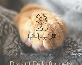 Distant Reiki 15 minutes for your pets