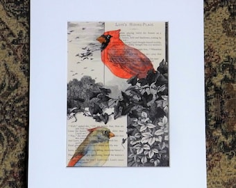 Cardinal Painting, male and female cardinal, original art, antique book page from the 1800's,  painted book page