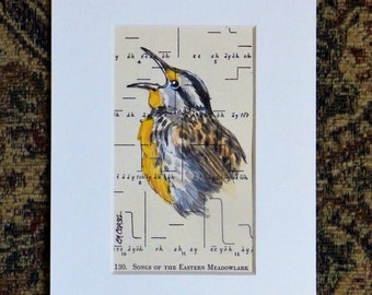 Meadowlark Original Painting on book page from 1951, original page, bird song diagram, gift for birder, matted to 5 X 7 inches, not framed