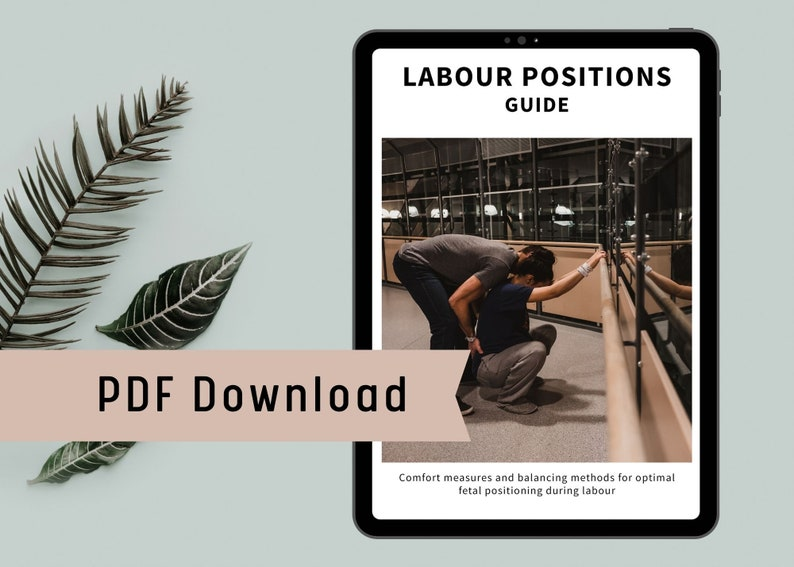 Labour Positions and comfort measures guide. PDF printable. image 0
