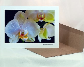 Photo Art Cards - Moth Orchid - 8 Cards - Blank Inside