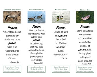 """Scripture Bookmarks - Bible Verses about PEACE - 4 bookmarks with """"Waterfowl"""" images and 4 different verses"""