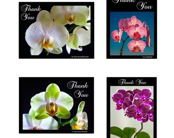 Note Cards - Thank You Notes - Orchid Collection #1 - 8 cards - Blank Inside