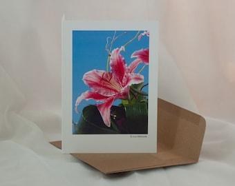 Photo Art Cards - Stargazer Lily - 8 Cards - Blank Inside
