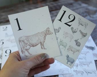 Printable Downloadable Vintage Look Number Flashcards | Homestead Farm Theme | Farmhouse Nursery Decor |