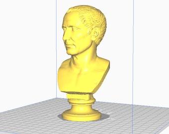 Julius Caesar 3D Printed Bust / Farnese Caesar Bust / Roman Bust / Emperor Caesar Bust / Caesar Statue