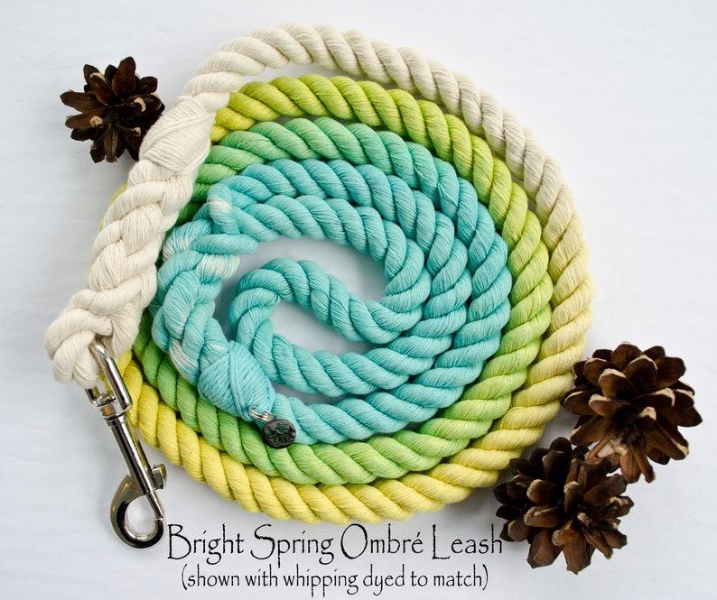 Bright Spring Ombr\u00e9 Cotton Rope Leash