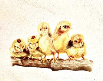 3-pack of Yellow Baby Chick Greeting Cards