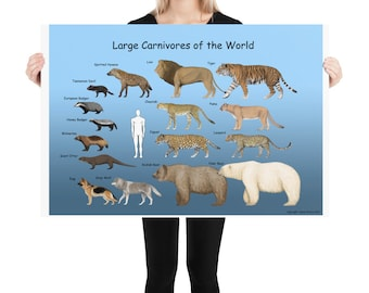 Large carnivores of the world poster