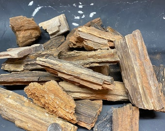 Bulk Arizona petrified wood. Large pieces.
