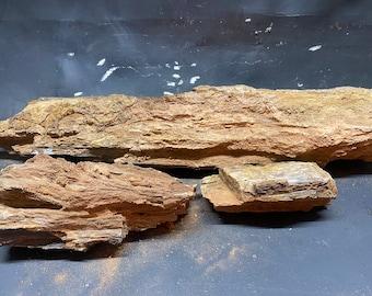Bulk Arizona petrified wood. Extra Large pieces.