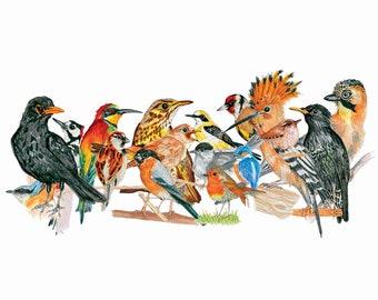 Passarada - Garden Birds - Colourful