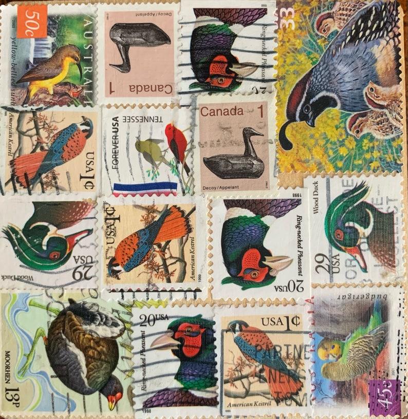 Birds Postage Stamp Coaster image 0