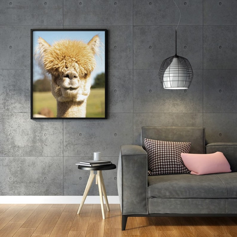 LuLu Digital Print Alpaca